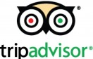 Poppy reviews on Tripadvisor